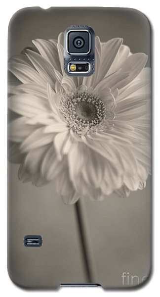 Galaxy S5 Case featuring the photograph Blooming by Aiolos Greek Collections