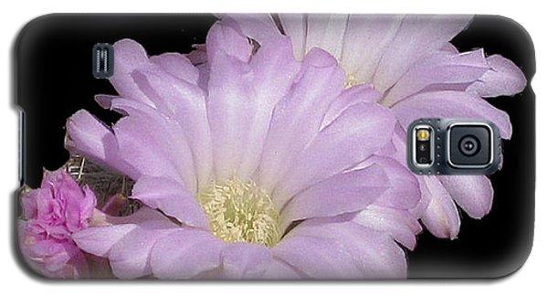 Blooming Arizona Cactus No. 1 Galaxy S5 Case