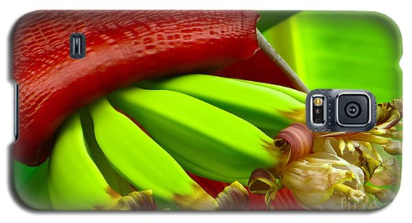 Galaxy S5 Case featuring the photograph Blooming Bananas by Joy Hardee
