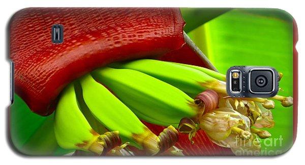 Blooming Bananas Galaxy S5 Case by Joy Hardee