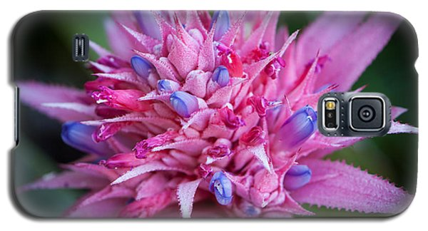 Galaxy S5 Case featuring the photograph Blooming Bromeliad by John Wadleigh