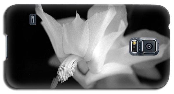 Blooming Cactus II Galaxy S5 Case by Silke Brubaker