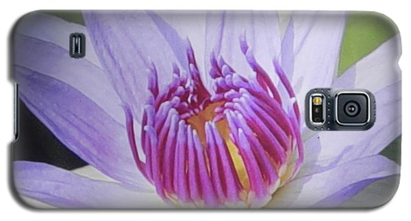 Galaxy S5 Case featuring the photograph Blooming For You by Chrisann Ellis