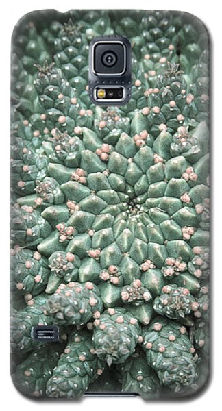 Blooming Geometry Galaxy S5 Case by Caitlyn  Grasso