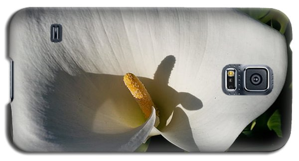 Blooming Lily Of San Francisco Galaxy S5 Case by Emmy Marie Vickers