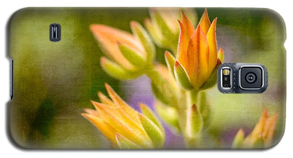 Blooming Succulents I Galaxy S5 Case