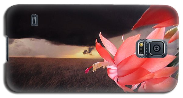 Blooms Against Tornado Galaxy S5 Case by Katie Wing Vigil