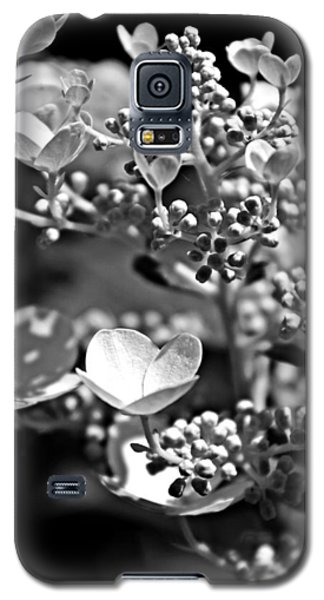 Blooms And Berries In Black And White Galaxy S5 Case