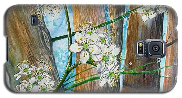 Blooms Of The Cleaveland Pear Galaxy S5 Case