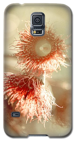 Blossom And Bokeh Galaxy S5 Case by Linda Lees