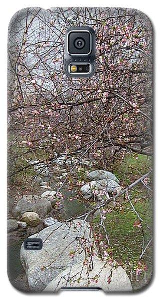 Blossom Brook Galaxy S5 Case