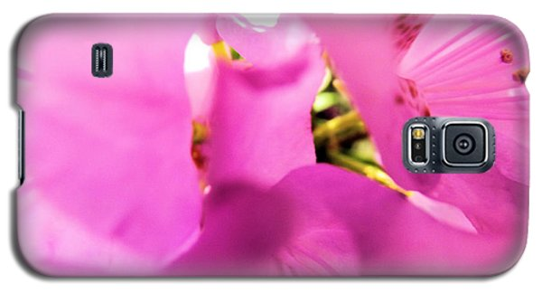 Galaxy S5 Case featuring the photograph Blossoming Beauty by Robyn King