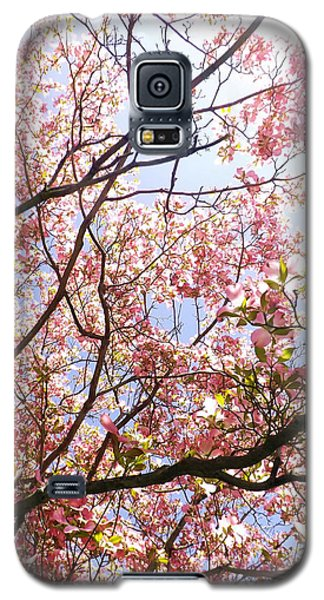 Blossoming Pink Galaxy S5 Case