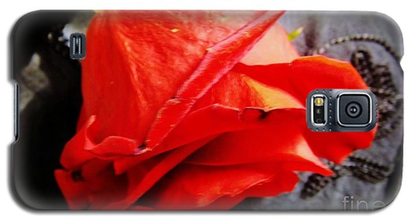 Galaxy S5 Case featuring the photograph Blossoming Red by Robyn King