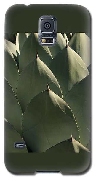 Blue Aloe Galaxy S5 Case