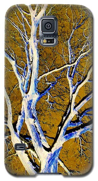 Galaxy S5 Case featuring the photograph Blue And Gold by Jodie Marie Anne Richardson Traugott          aka jm-ART