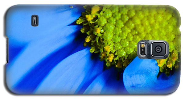 Galaxy S5 Case featuring the photograph Blue And Yellow by Erin Kohlenberg