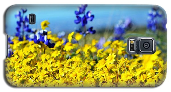 Blue And Yellow Wildflowers Galaxy S5 Case