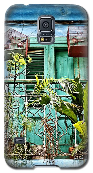Blue Balcony Red Bird Cages Galaxy S5 Case