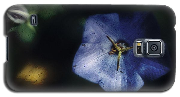 Blue Balloon Flower In The Shadows Galaxy S5 Case by Louise Kumpf