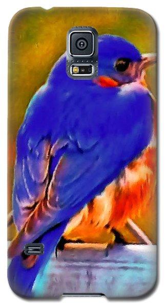 Blue Beauty 2013 Galaxy S5 Case