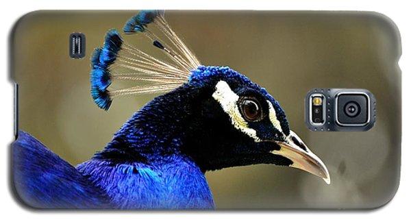 Blue Bell Galaxy S5 Case