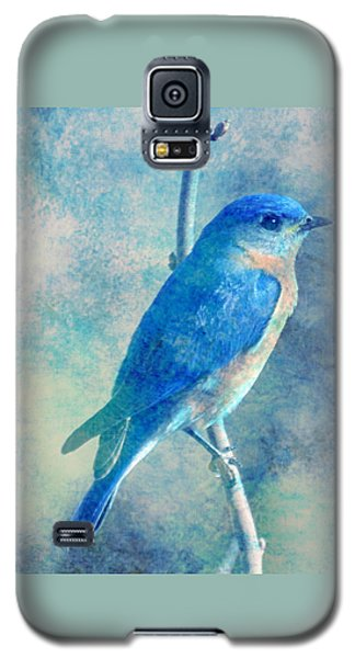 Blue Bird Blue Sky Galaxy S5 Case