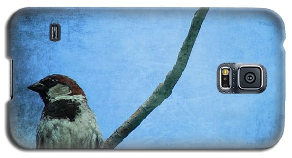 Sparrow On Blue Galaxy S5 Case
