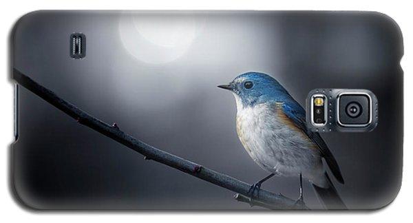 Branch Galaxy S5 Case - Blue Bird by Takashi Suzuki