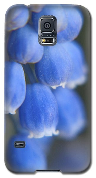 Blue Blossoms Galaxy S5 Case