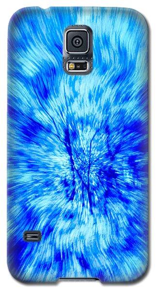Blue Burst Of Autumn Galaxy S5 Case