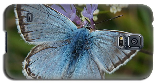 Galaxy S5 Case featuring the digital art Blue Butterfly by Ron Harpham