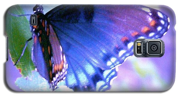 Blue Butterfly Galaxy S5 Case by Shirley Moravec