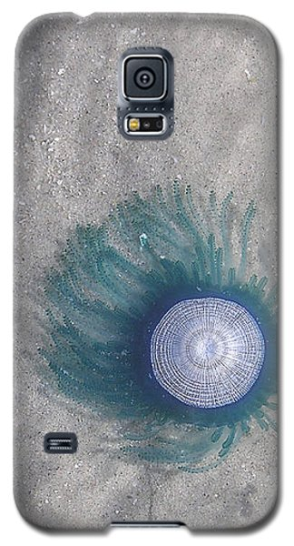 Blue Button Jellyfish Galaxy S5 Case