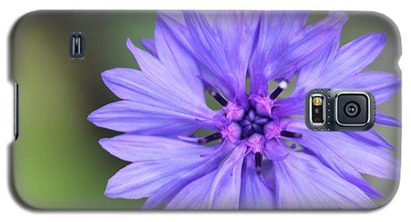 Blue Button Galaxy S5 Case
