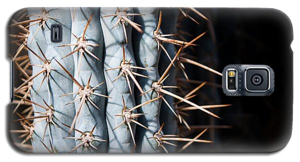 Galaxy S5 Case featuring the photograph Blue Cactus by John Wadleigh