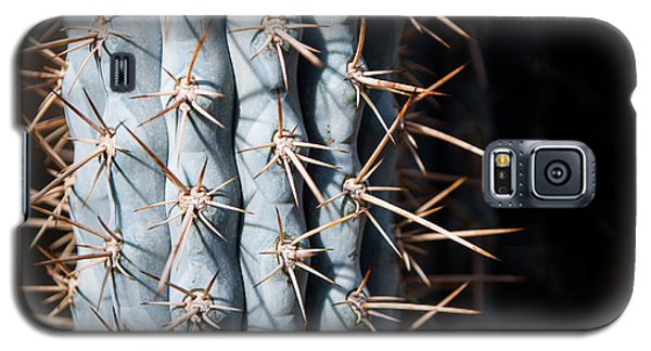 Blue Cactus Galaxy S5 Case