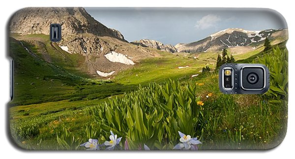 Handie's Peak And Blue Columbine On A Summer Morning Galaxy S5 Case