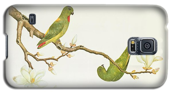 Parakeet Galaxy S5 Case - Blue Crowned Parakeet Hannging On A Magnolia Branch by Chinese School