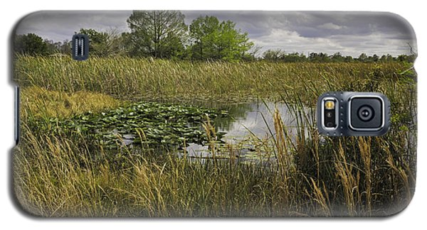 Blue Cypress Wetlands Galaxy S5 Case