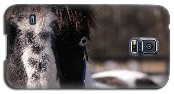Blue Eye Stare Galaxy S5 Case