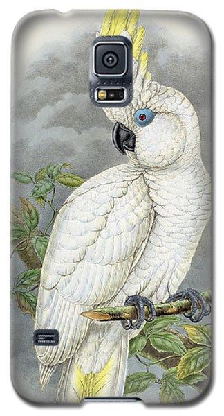 Blue-eyed Cockatoo Galaxy S5 Case