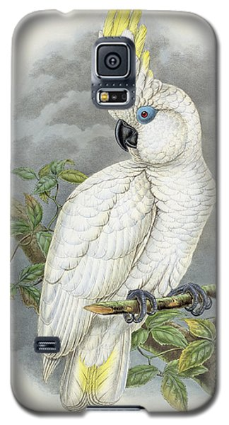 Blue-eyed Cockatoo Galaxy S5 Case by William Hart