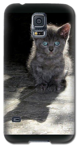 Blue Eyes Galaxy S5 Case