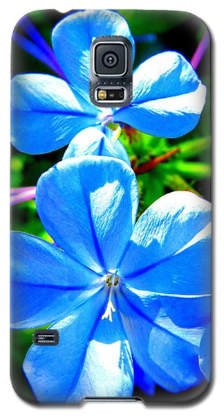 Galaxy S5 Case featuring the photograph Blue Flower by David Mckinney
