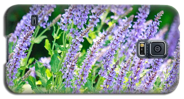 Blue Fortune Flower Spikes Galaxy S5 Case
