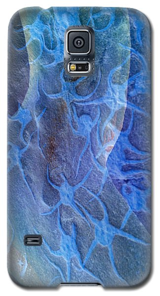 Blue Fossil Galaxy S5 Case