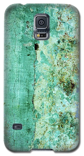 Blue Green Wall Galaxy S5 Case