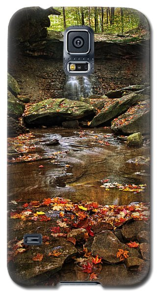 Blue Hen Falls In Autumn Galaxy S5 Case