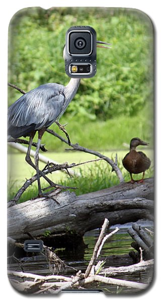 Blue Heron And Friend Galaxy S5 Case